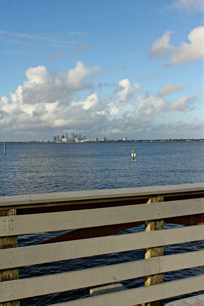 Ballast Point Tampa