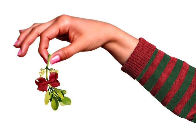 hand holding mistletoe