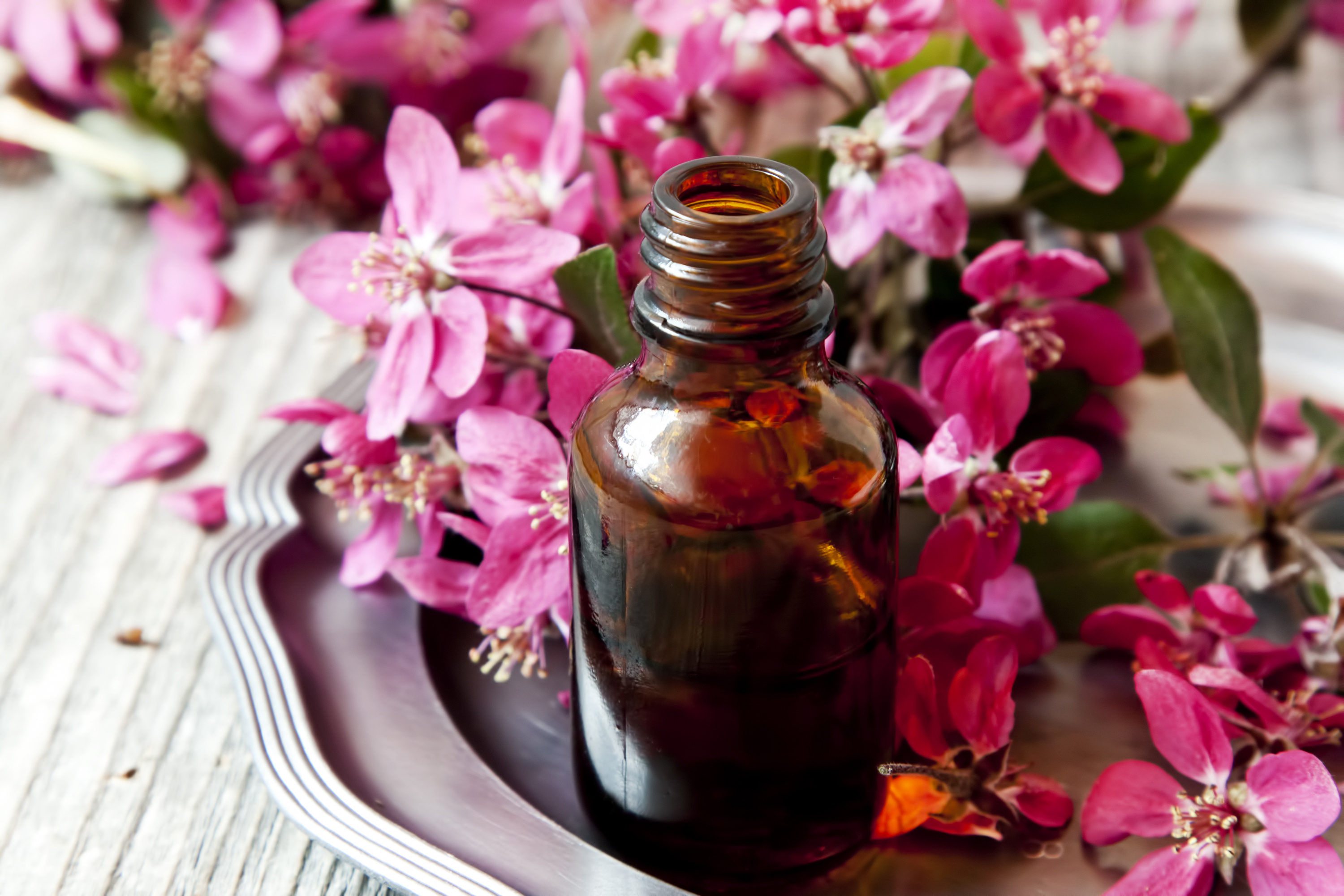 Flowers With Essential Oils Flowers Healthy